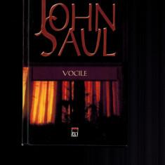 John Saul - Vocile, Rao, 2006 - Carte Horror