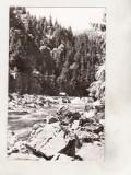 bnk cp  Muntii Apuseni - Valea Ariesului - Cascada Zugaia - circulata
