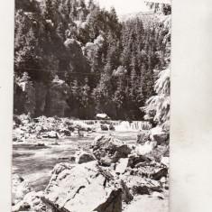 Bnk cp  Muntii Apuseni - Valea Ariesului - Cascada Zugaia - circulata, Printata
