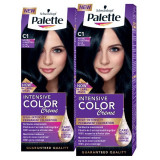 Pachet promo PALETTE Intensive Color Creme C1-Negru Albastru, 2 x 110ml