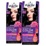 Pachet promo PALETTE Intensive Color Creme N1 Negru, 2 x 110ml