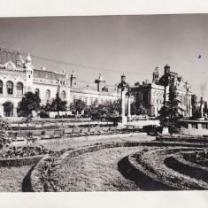 Bnk cp Oradea - Piata Victoriei - uzata - Carte Postala Crisana dupa 1918, Circulata, Printata