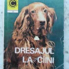 Dresajul La Caini - N.a. Stravoiu, N.n. Stravoiu, 408234 - Carti Agronomie
