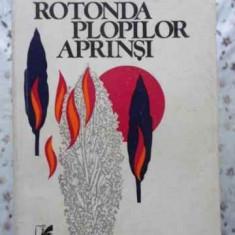 Rotonda Plopilor Aprinsi - Valeriu Anania, 408184 - Roman