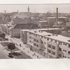 Bnk cp Sibiu - Vedere din cartierul Terezian - uzata - Carte Postala Transilvania dupa 1918, Circulata, Printata