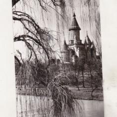 Bnk cp Timisoara - Catedrala mitropoliei Banatului - uzata - Carte Postala Banat dupa 1918, Circulata, Printata