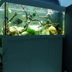 Juwel Acvariu 300 litri alb - Filtru si material filtrant acvariu