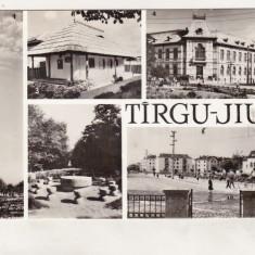 Bnk cp Targu Jiu - Vedere - uzata - Carte Postala Oltenia dupa 1918, Circulata, Printata