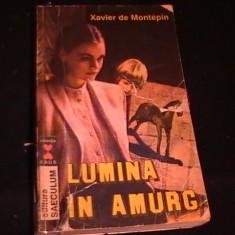 LUMINA IN AMURG-XAVIER DE MONTEPIN-286 PG- - Roman