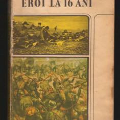 (C7912) EROI LA 16 ANI DE ALEXANDRU DAIA - Roman istoric