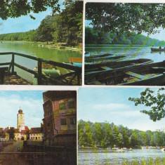 Bnk cp Sibiu - lot 14 cp - uzate - Carte Postala Transilvania dupa 1918, Circulata, Printata