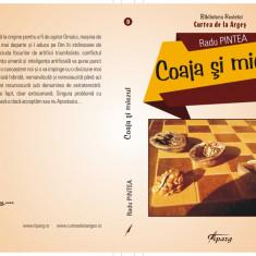 Coaja şi miezul, de Radu Pintea, Editura Tiparg, 2017 - Carte despre internet