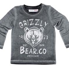 Bluza gri Grizzly Minoti