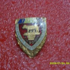Insigna A 3-a intalnire a colectionarilor de insigne Timisoara 1983 - Insigna fotbal
