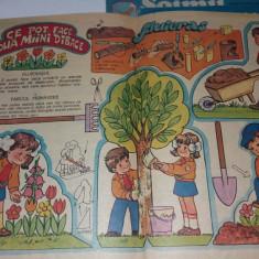 LOT 5 REVISTE ȘOIMII PATRIEI/ DIFERITE NUMERE ANII 1983-1986 - Revista scolara