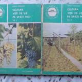 Cultura Vitei De Vie Pe Spatii Mici Vol.1-2 - Sarghi Trandafir, 408533 - Carti Agronomie