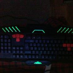 Tastatura-Keyboard Usb - Tastatura PC Newmen