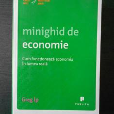 GREG IP - MINIGHID DE ECONOMIE, CUM FUNCTIONEAZA ECONOMIA IN LUMEA REALA