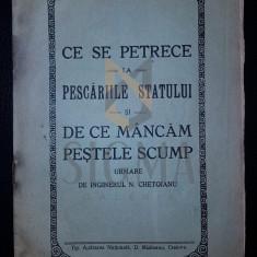 N. CHETOIANU (INGINER), CE SE PETRECE LA PESCARIILE STATULUI SI DE CE MANCAM PESTELE SCUMP, CRAIOVA, 1929