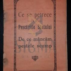 N. CHETOIANU (INGINER), CE SE PETRECE LA PESCARIILE STATULUI SI DE CE MANCAM PESTELE SCUMP, CRAIOVA, 1928