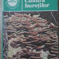 Cultura Buretilor - Nicolae Mateescu, 403555 - Carti Agronomie