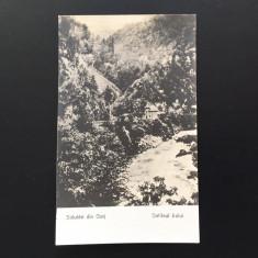 Gorj - Defileul Jiului - Carte Postala Banat 1904-1918, Circulata, Fotografie