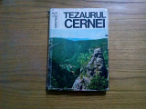 TEZAURUL CERNEI - Ilie Cristescu (autograf) -  Sport Turism, 1978, 174 p.
