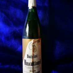 Sticla de vin vechi, datata 1996. Bucium Iasi. Muscat Ottonel.