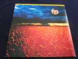 Paolo Tofani - Un Altro Universo _ vinyl,LP,album _Musica Divina(Italia), VINIL