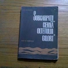 SUBCARPATII dintre CERNA OLTETULUI si GILORT - Lucian Badea - Academiei, 1967 - Carte Geografie