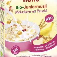 Cereale bebelusi Holle Bio musli multicereale cu fructe, dupa10 luni - Cereale copii
