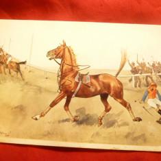Ilustrata comica -Jocheu trantit de cal - semnata , inc.sec.XX