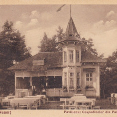PIATRA NEAMT, PAVILIONUL GOSPODINELOR DIN PARCUL COZLA, EDITURA V. IONESCU - Carte Postala Moldova dupa 1918, Necirculata, Printata