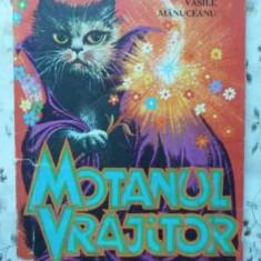 Motanul Vrajitor - Vasile Manuceanu, 404524 - Carte Basme