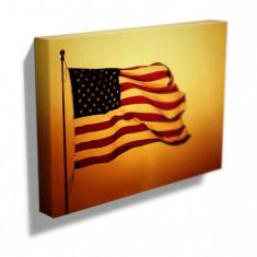 Tablou Canvas - Steag America- SUA