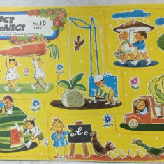 REVISTA ARICI POGONICI NR. 10/1976:Constanta Buzea/Irimie Straut/Clelia Ottone+ - Revista scolara