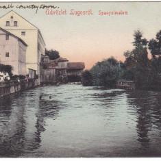 #2137 -Romania, Lugoj carte postala circulata 1906: Moara Spaniola - Carte Postala Banat 1904-1918, Fotografie
