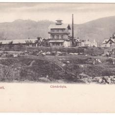 #2146 -Romania, Ocnele Mari c.p. necirc. aprox. 1900: Camarasia, targ animat