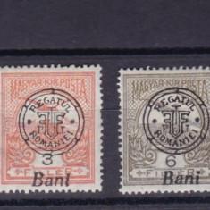 ROMANIA 1919 POSTA LOCALA ORADEA TURUL CU SARNIERA - Timbre Romania, Nestampilat