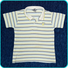 DE FIRMA → Tricou cu guler, bumbac piquet, H&M → baieti | 4 - 5 ani | 104-110 cm, Marime: Alta, Culoare: Multicolor