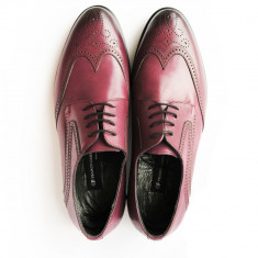 Pantofi eleganti pentru barbati Franco Gabbani LIBERATORE, piele naturala, bordo, 6315, 41 - Pantofi barbat