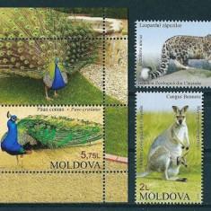 MOLDOVA 2013 - FAUNA - SERIE DE 2 TIMBRE+BLOC NESTAMPILAT - MNH / moldova42