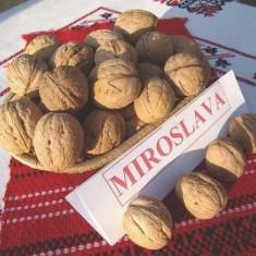 Nuc Miroslava (din samanta selectionata)