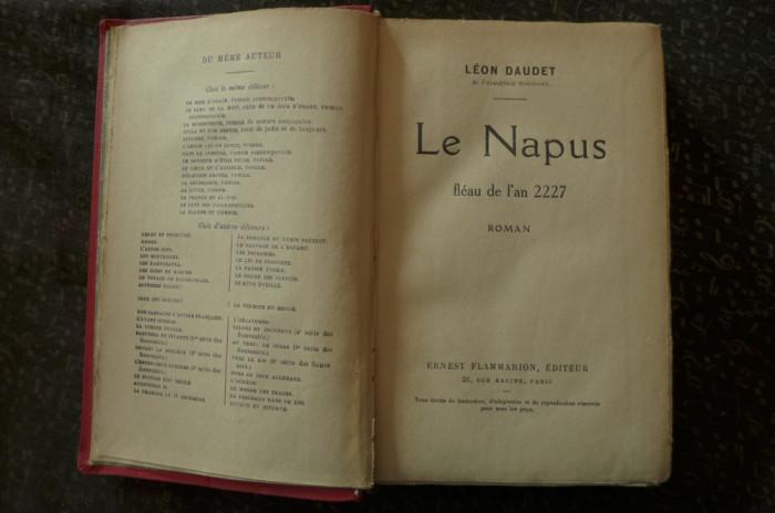 Le Napus de Leon Daudet Ed. Ernest Flammarion 1927 foto mare