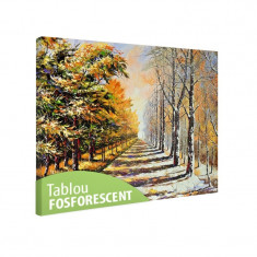 Tablou fosforescent Toamna si iarna - Tablou canvas