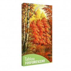 Tablou fosforescent Toamna in padure - Tablou canvas