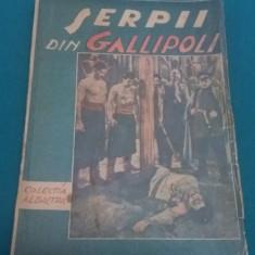 ȘERPII DIN GALLIPOLI/ COLECȚIA ALBASTRĂ/ VIRGIL FLORESCU/ ANII 1930 - Carte veche