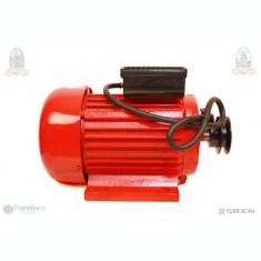 Motor electric 2800RPM 3kw Micul Fermier