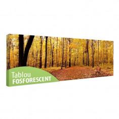 Tablou fosforescent Panorama de toamna - Tablou canvas