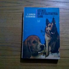 CIINII SI UTILITATEA LOR - E. Carnatiu, D. Stoenescu - Ed. Ceres, 1979, 388 p.